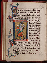 Rothschild Canticles Illuminated pag